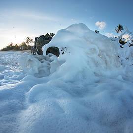 Foam elephants - Sean Davey