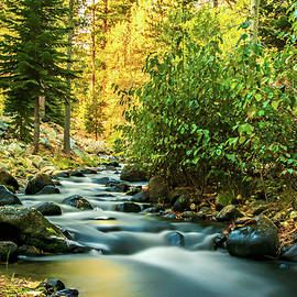 Maria Coulson - Galena Creek