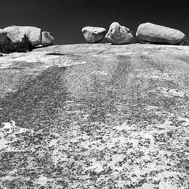 Giant Glacial Erratics On Bald Rock  by Frank Wilson