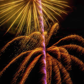 Golden Fireworks - Garry Gay