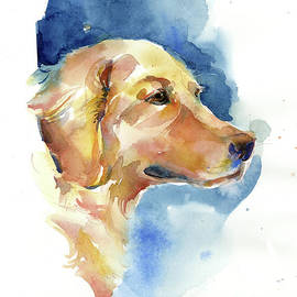 John Keeling -   Golden Retriever