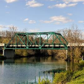 Green Bridge by Pat Turner