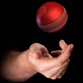 Hand Tossing Cricket Ball - Allan Swart