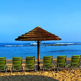 Michael Rucker - Hawaiian Beach
