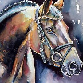 Kovacs Anna Brigitta - Horse