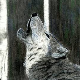 Jay Johnston - Howling Wolf