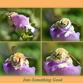 Into Something Good by AJ Schibig