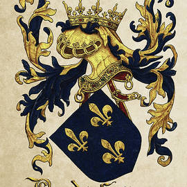 King of France Coat of Arms - Livro do Armeiro-Mor