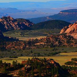 Kolob Plateau In Zion by Raymond Salani III