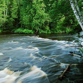 Lower Tahquamenon Falls by Michael Peychich
