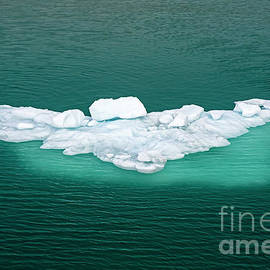 Melting Ice by Arterra Picture Library