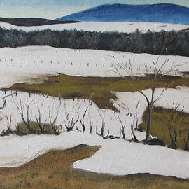Francois Fournier - Melting Snow In The Appalachians Quebec Canada