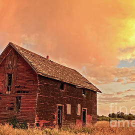 Memories by Robert Bales