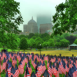 Joann Vitali - Military Heroes Garden of Flags - Boston Common