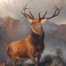 MotionAge Designs - Monarch of the Glen