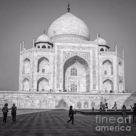Taj Mahal - Square by Neha Gupta