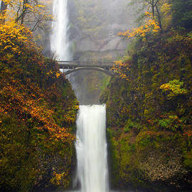 Multnomah Autumn by Mike Dawson