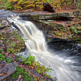 Murray Reynolds Waterfall by Marcia Colelli