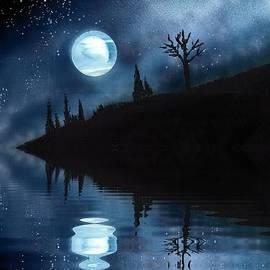 Night Sky by Bill Richards