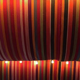 Denise Mazzocco - Orange Striped Canopies