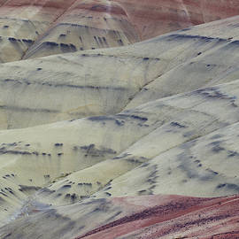 Painted Hills Vertical Zenview by Darrel Giesbrecht