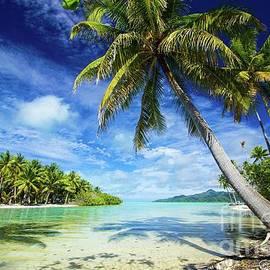 Kris Hiemstra - Paradise Found