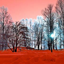 Dagmar Batyahav - Orange Zone