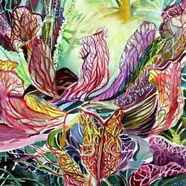 Pitcher Plants by Mindy Newman