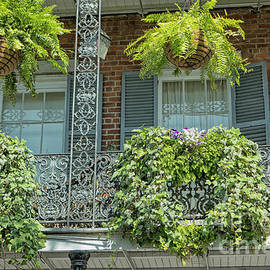 Plants on balconies in New Orleans, USA by Patricia Hofmeester