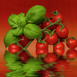 David French - Plum Cherry Tomatoes Basil