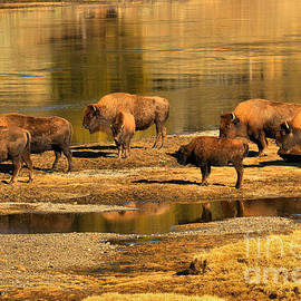 Adam Jewell - Gathering To Cross The Yellowstone River