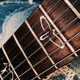 PRS Guitar by AJ Novak