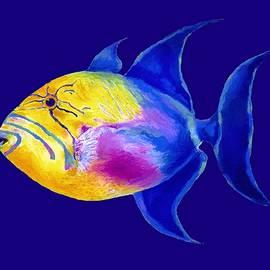 Stephen Anderson - Queen Triggerfish