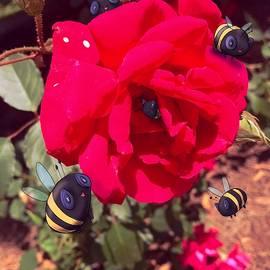 Real Plushies Rose Bees - Ludwig Van Bacon