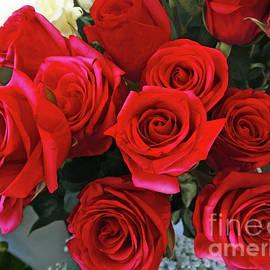 Jasna Dragun - Red Bouquet