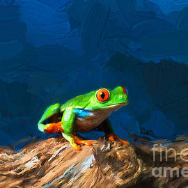 Red-eyed Tree Frog by Les Palenik