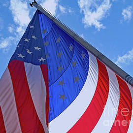 Red White And Blue by Ann Horn