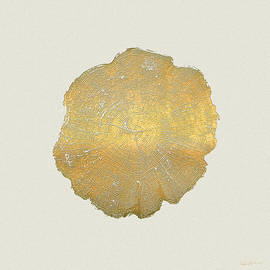 Rings of a Tree Trunk Cross-section in Gold on Linen