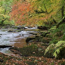 River Barle In Somerset by Pete Hemington
