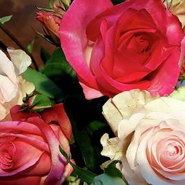Neal Alicakos - Roses
