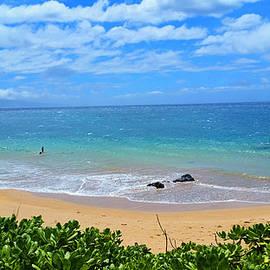 Michael Rucker - Sandy Beaches of Maui
