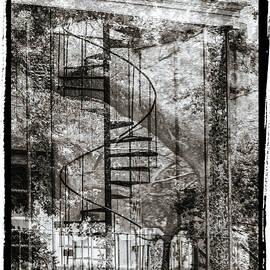 Bob Neiman - Savannah Staircase and Tree 1125