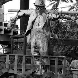 Doc Braham - Scarecrow Art
