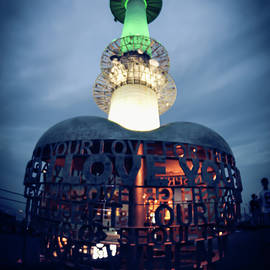 seoul n tower - Hyuntae Kim