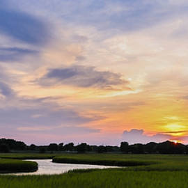 Shem Creek Marsh by Todd Wise