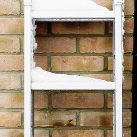 Snow on a ladder - Tom Gowanlock