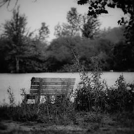Shelley Smith - Solitude