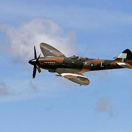 Spitfire by Shoal Hollingsworth