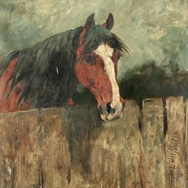 Study of a horse - John Emms