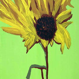 Sunflower by Karen Nicholson